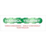 hasgul34