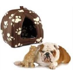 Köpek & Kedi Ürünleri