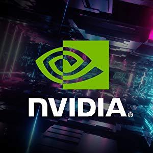 NVIDIA GeForce RTX 20 Serisi Grafik Kartı